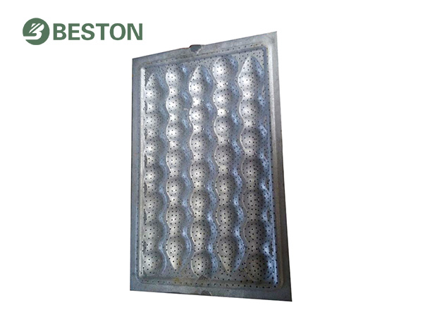 apple/egg tray mold from Beston