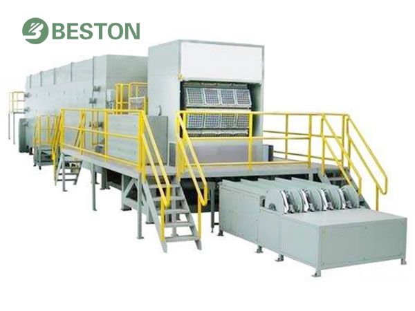 Egg tray packing system for sale Beston