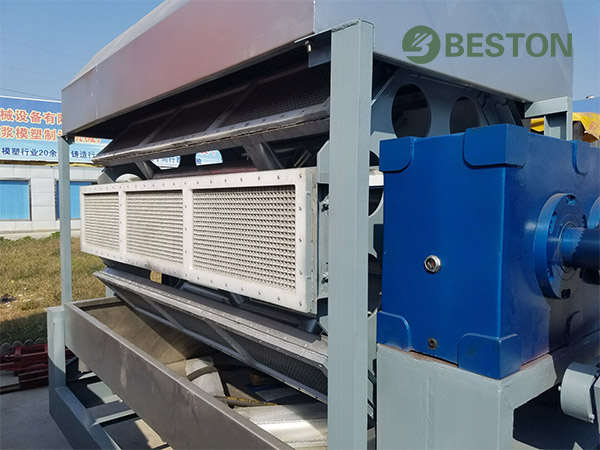 Best Beston Seedling Tray Making Machine