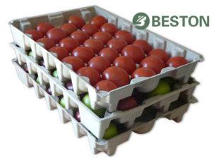 Fruit tray making machine Beston