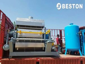 BTF-4-8 Egg Tray Machine for Honduras Customer