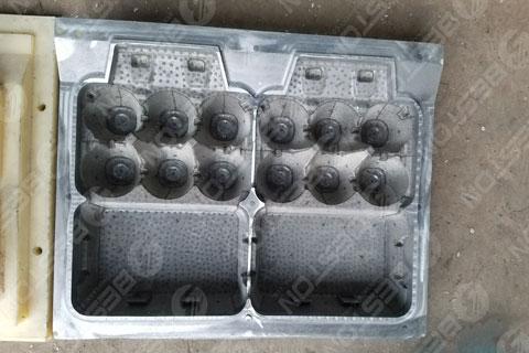 6-hole Egg Carton Molds