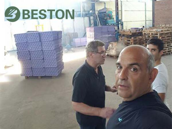end products of Beston apple tray manufacturing machine