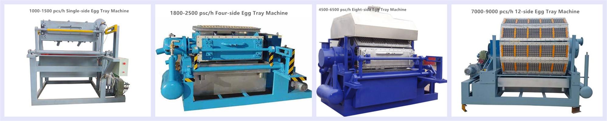 Rotary Egg Tray Machine from Beston