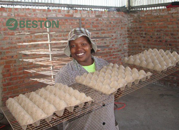 Manual Egg Tray Machine Natural Drying