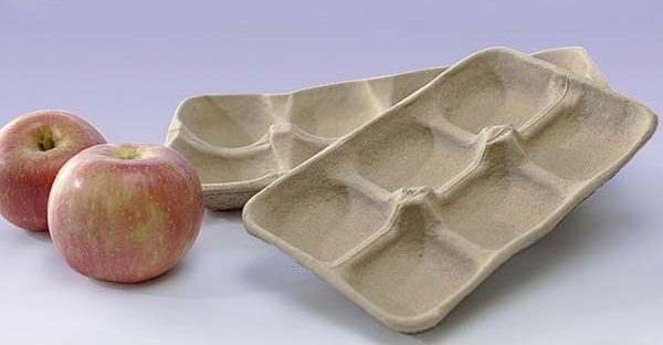 Paper Fruit Trays