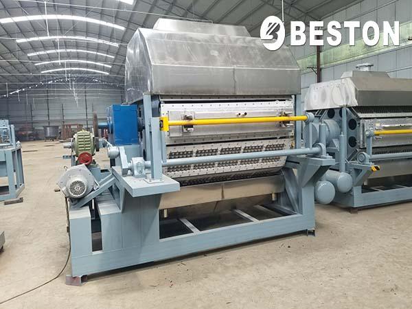 Beston Apple Tray Manufacturing Machine
