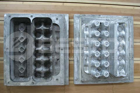 Egg Carton Molds