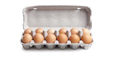 12 Egg Box