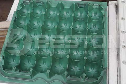 Plastic Egg Tray Mold