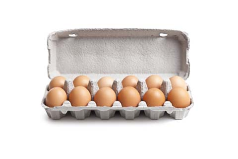 12-shell Egg Box