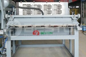 BTF-1-4 Egg Carton Machine to Spain