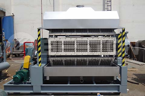 BTF-5-8 Egg Tray Production Line