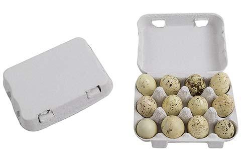 Quail Egg Cartons