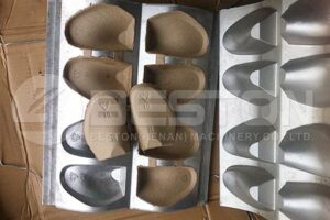 Shoe Tray Molds