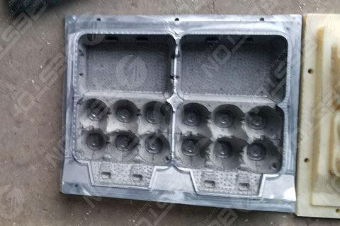6 Egg Carton Mold